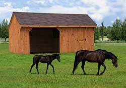 Single horse run inn w/ tack room